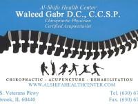 Waleed Gabr